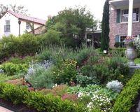 native garden design ideas texas native landscape design ...
