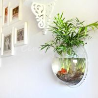 Details about Creative Acrylic Wall Mounted Fish Bowl Tank ...