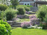 17 Best ideas about Terraced Garden on Pinterest | Sloping ...