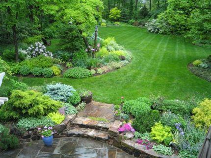 gal's acre backyard