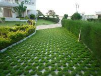 Flooring. Modern Outdoor Fresh Landscaping Design