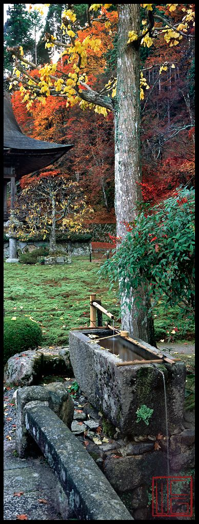 Hoshun-In Zen Gardens in Kyoto, Japan • photo: William Corey Gallery: