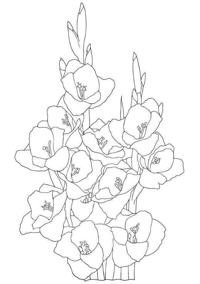 Welcome to Dover Publications Creative Have How to Draw