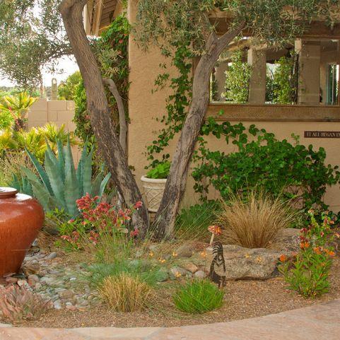 ideas arizona landscaping