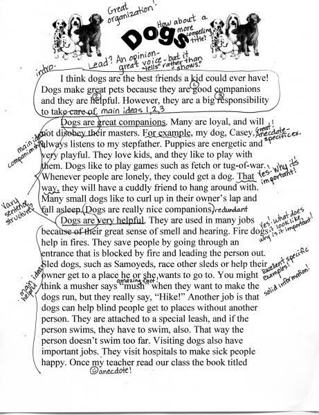 Explanatory essay example. 100 Expository Essay Topic