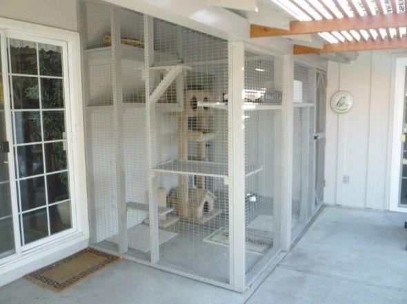 bulding an indoor cat enclosure  Figure 3 4 Constructed off living room window onto existing