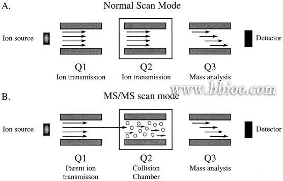 17 Best images about Mass Spectrometry on Pinterest