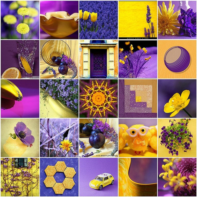 59 best images about Purple and Yellow on Pinterest  Art studios Grey yellow and Purple door
