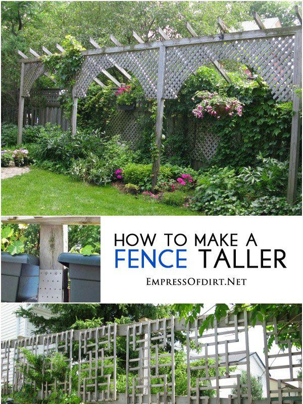25 Best Ideas About Garden Privacy On Pinterest Garden Privacy