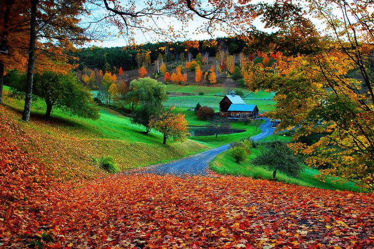 New England Fall Wallpaper Sleepy Hollow Farm Woodstock Vermont I Want To Live