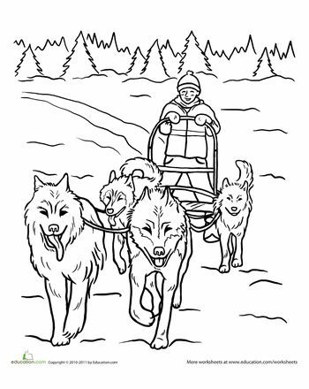 78 Best images about Dog sledding/Iditarod Race on