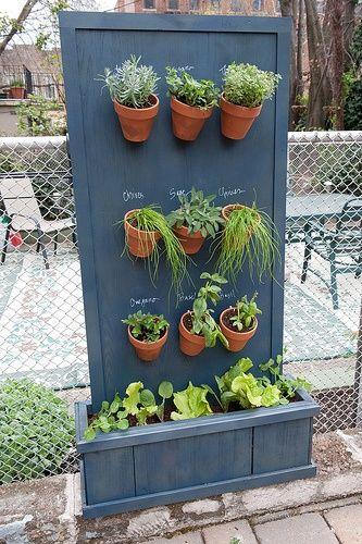 Les 107 Meilleures Images à Propos De Herb And Plant T Ideas