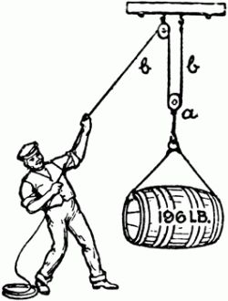 17 Best images about Simple Machines on Pinterest
