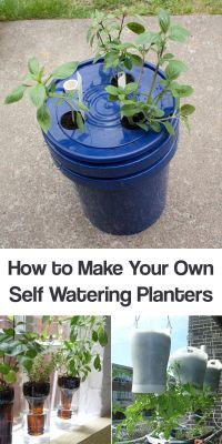17 Best ideas about Self Watering Planter on Pinterest ...