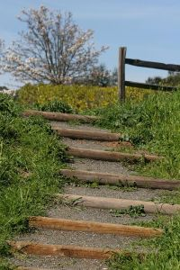 steep hill steps | Ideas for the House | Pinterest | Yards ...