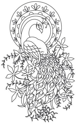 1176 best images about Ö Adult Colouring~Owls~Birds
