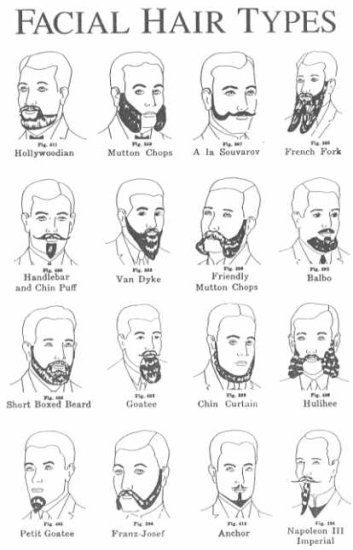 225 best images about Handlebar moustache! on Pinterest