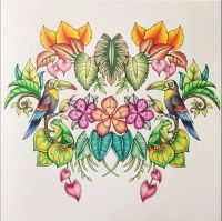 1000+ images about Magical Jungle Coloring Book on ...