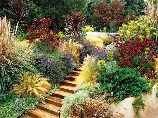 22 Best Images About Mediterranean Garden Ideas On Pinterest
