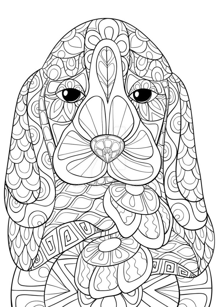 453 best images about Cats + Dogs Coloring Pages for