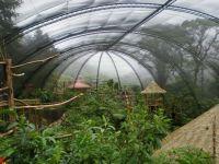 Best 25+ Bird aviary ideas on Pinterest | Macaw cage, Pet ...