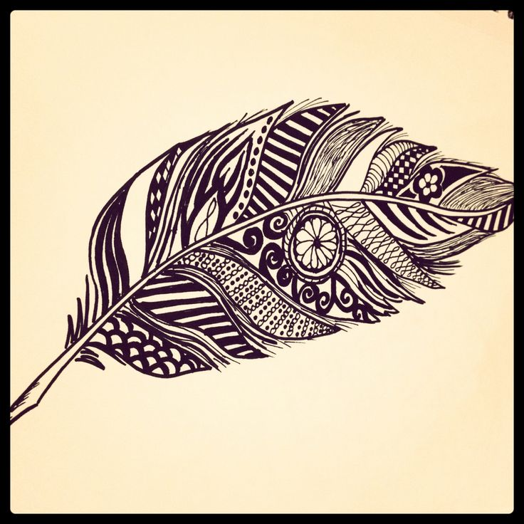 Zentangle Feather Artsy Pinterest Feathers Feather