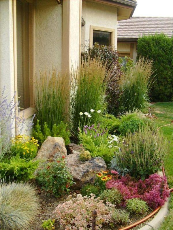 backyard landscape wet area