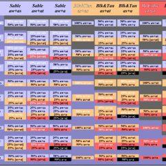 Mitosis Worksheet Diagram General Electric Refrigerator Parts Human Hair Color Genetics Chart - Google Search | Pinterest