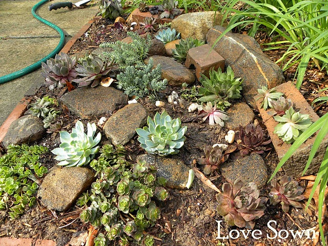 10 Best Images About Rock Garden On Pinterest Gardens Outdoor
