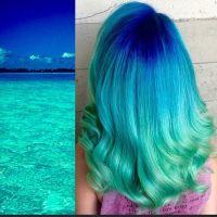 17 beste ideen over Oceaan Haren op Pinterest - Felle ...