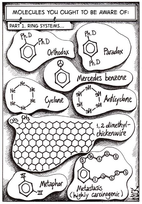 389 best images about Bio Lab Cartoons on Pinterest
