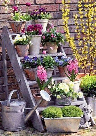 25 Best Ideas About Spring Garden On Pinterest Spring Vegetable