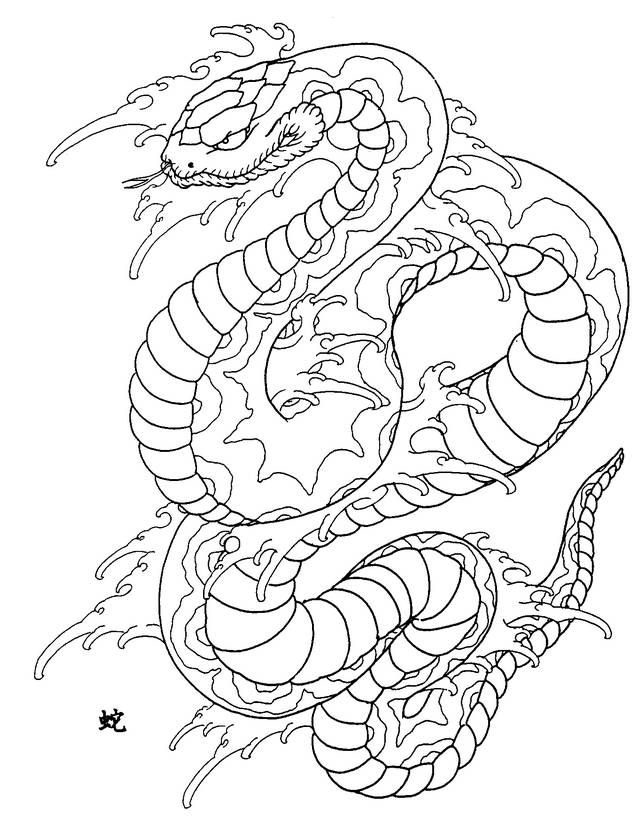 359 best images about coloring dinosaurs reptils dragons