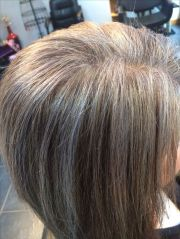 silver highlights easy