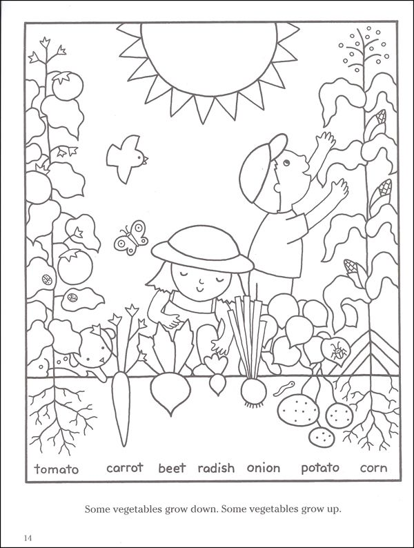 15 best images about 4-H Garden Coloring Pages on Pinterest