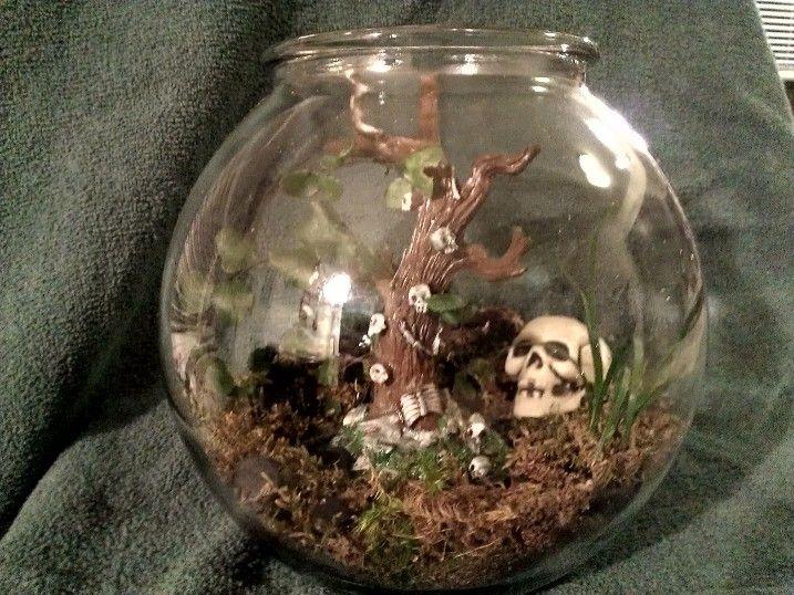 Halloween Skull Terrarium  Inside the Glass Terrariums