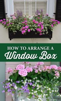 25+ best ideas about Window Boxes on Pinterest