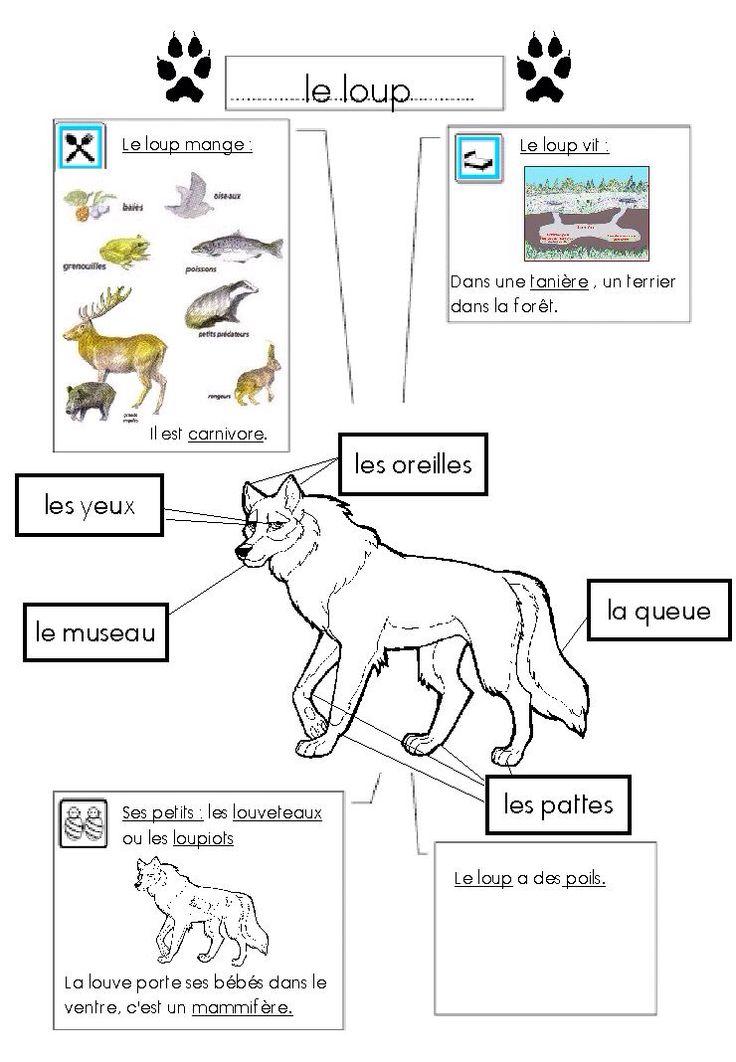 90 best images about Fiche d'identité..... animaux on