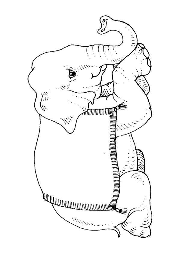 De 92 beste bildene om coloring elephants and monkeys på