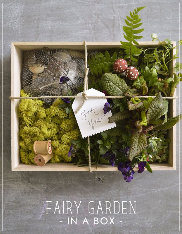 40 Best Images About Gardening Gift Ideas On Pinterest Gardens