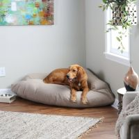 Best 25+ Bolster Dog Bed ideas on Pinterest | Xxl dog beds ...