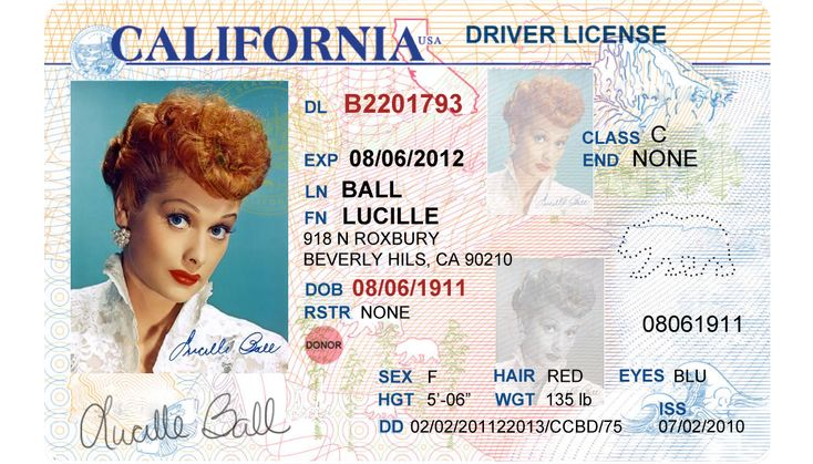 California drivers license editable psd template download