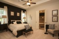 Master Bedroom with Accent Wall | Nola | Pinterest ...