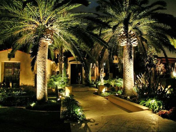gorgeous outdoor lighting plan