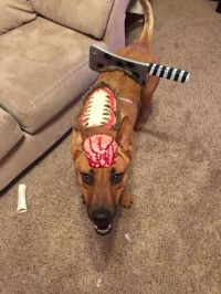 17 Best images about Buddy Halloween costumes on Pinterest ...