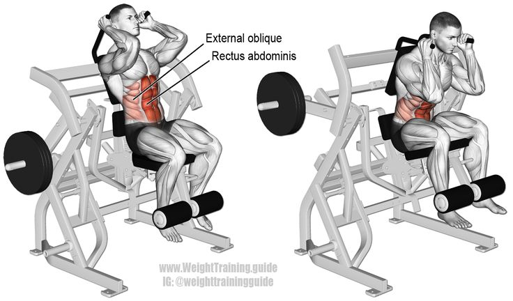 Machine leg raise crunch. An isolation and pull exercise