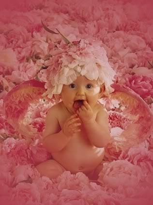 Very Cute Babies Wallpapers For Desktop 38 Best Images About Anne Geddes On Pinterest Twin What