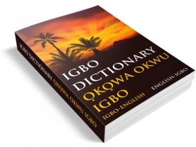 igbo language, schools, south-east, leaders, education