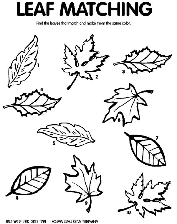 17 Best images about Colouring Pages-leaf side pieces on