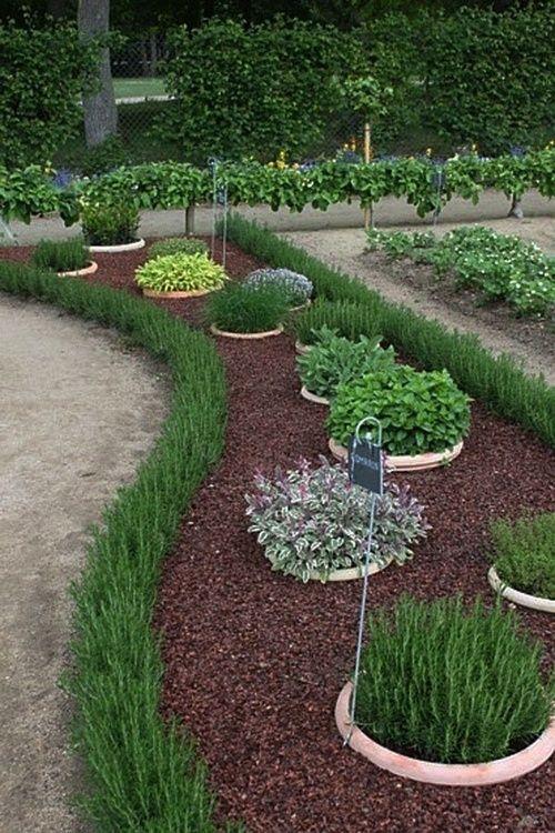 17 Best Ideas About Herbs Garden On Pinterest Growing Herbs Diy
